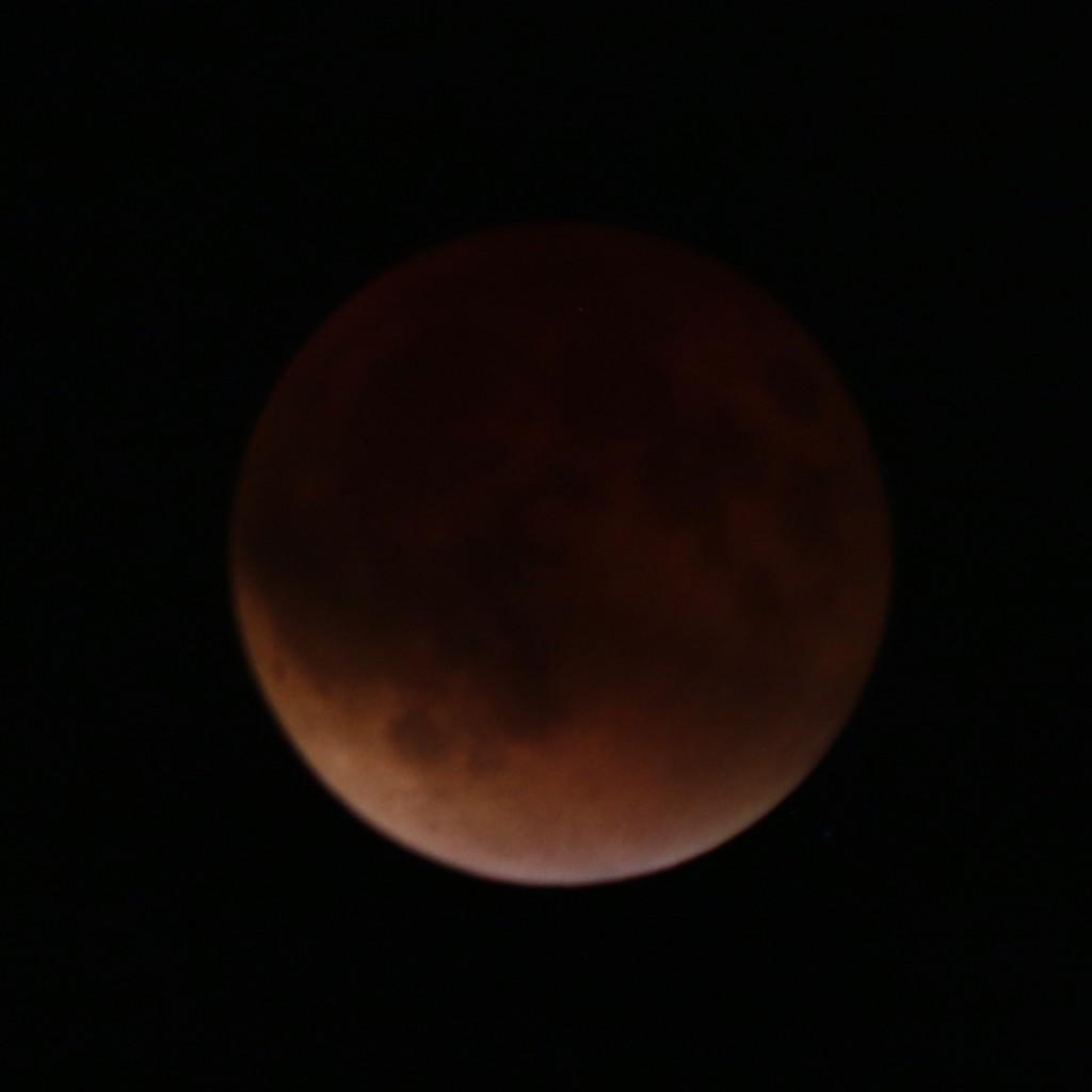 SupermoonEclipse2138